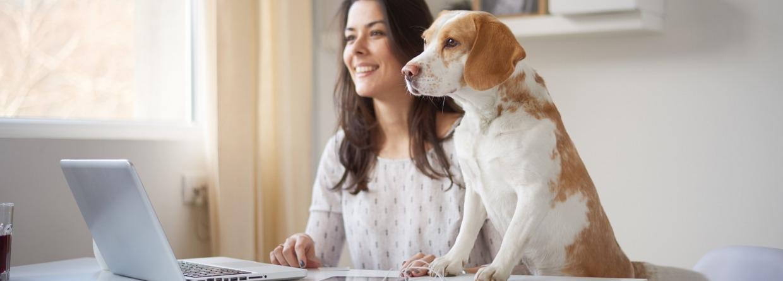 Vrouw achter haar laptop met haar hond