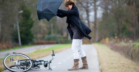 Vrouw met paraplu van fiets gevallen door storm