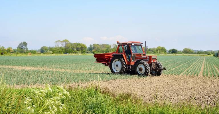 Tractor op het veld