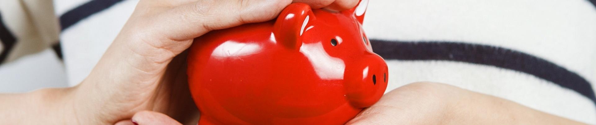 Sparen - rood spaarvarken